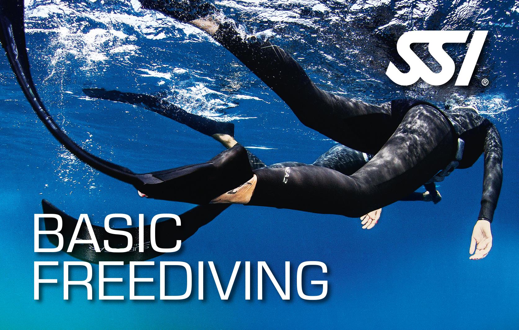 Basic Freediving