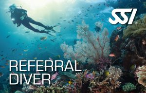Junior Referral Diver
