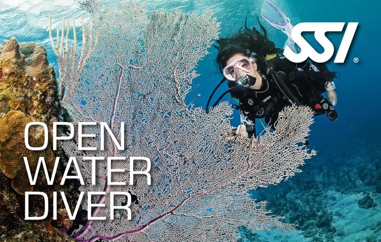 Open Water Diver für Kurzentschlossene