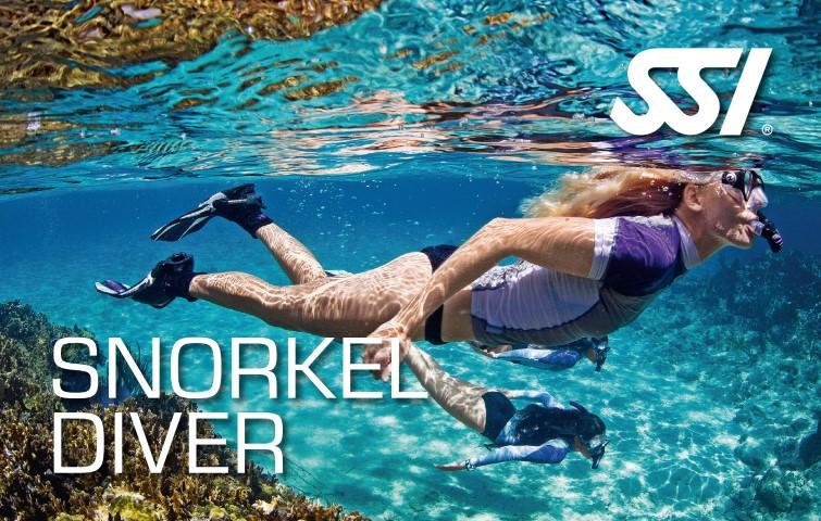 Snorkel Diver / Schnorcheln