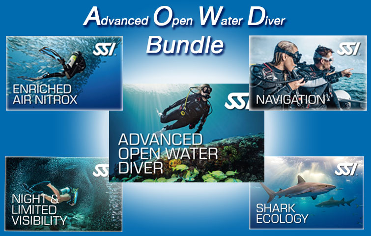 AOWD Bundle