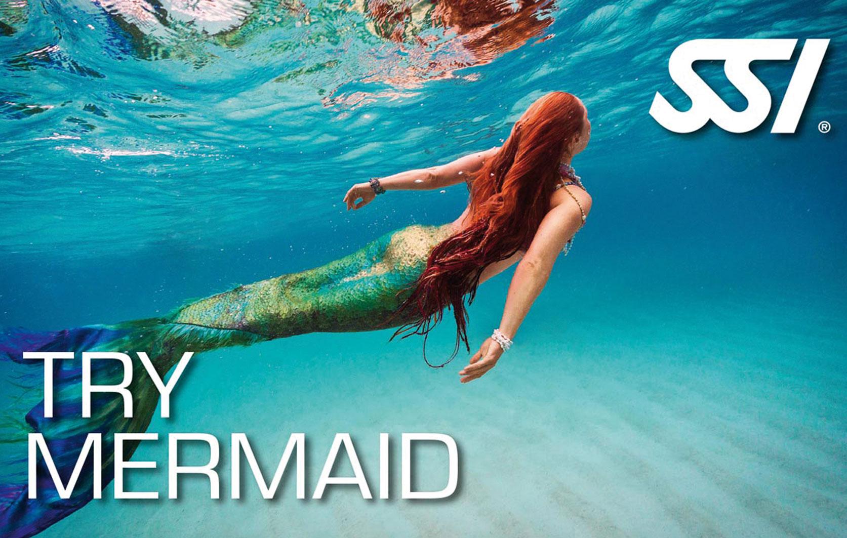 Try Mermaid